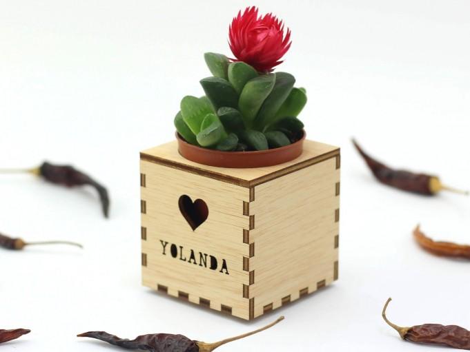 Kajhuchä Q-Box - Corazón y tapa con hueco