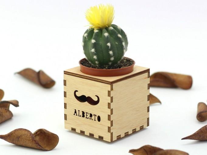 Kajhuchä Q-Box - Bigote y tapa con hueco