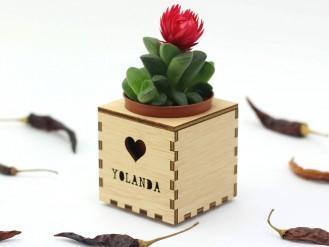 Kajhuchä Q-Box