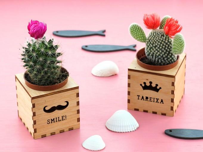 Kajhuchä Q-Box - Smile Tareixa