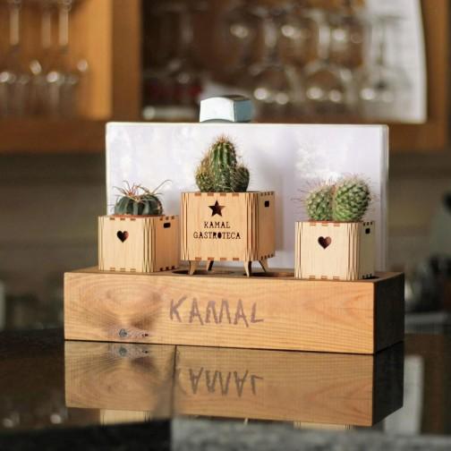 Los cactus son para el verano